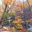 Lake Tenkiller: Buzzard Roost Nature Trail - 1mi photo