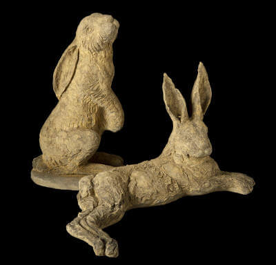 Hampshire Hares