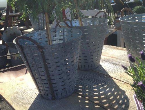 olive bucket planter metal galvanised steel industrial vintage planter