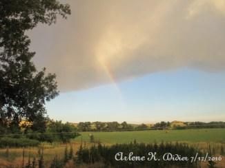 Random Rainbow1