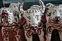 Zicatan Chiapas vce 01
