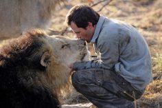 lion2BM_700x467