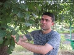Arlen Shahverdyan. Yerevan, August 2014. All Rights Reserved. IMG 03