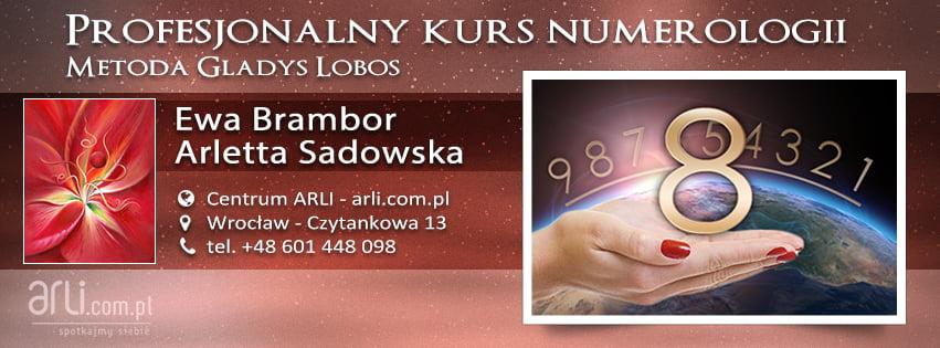 Profesjonalny Kurs Numerologii