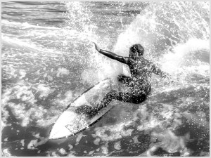 Surfer Boy - Janis Williams