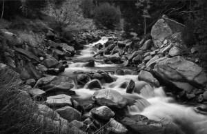 Tom Wilson - Brown Canyon Rapids