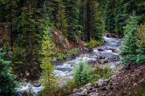 Tom Wilson - Copper Creek