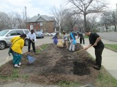 Students working hard on spreading compost!