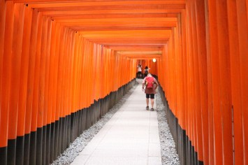 Breathtaking orange torii gates