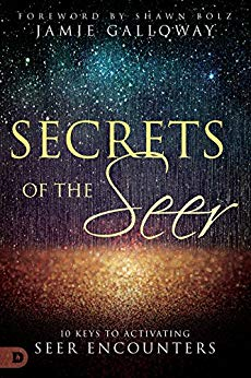 The Secrets of the Seer by Jamie Galloway