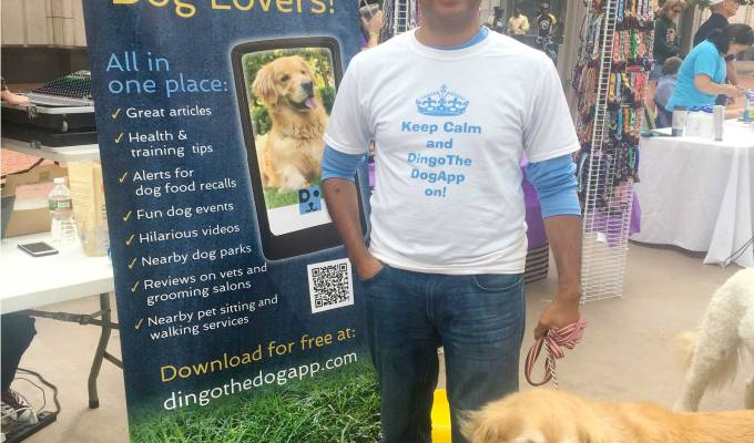 Social Media Campaign and Event Marketing for Dingo the Dog App