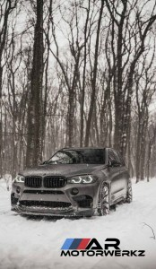 BMW X5 in Snow