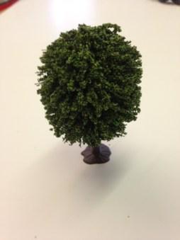 Javis 'N' Small Oak Treee