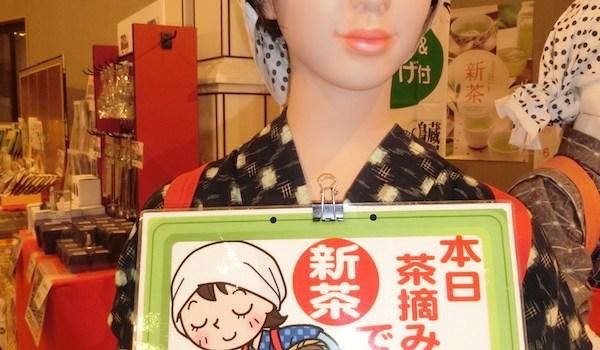 保護中: 018/6/02 箱根神社・スカイウォーク・茶摘み