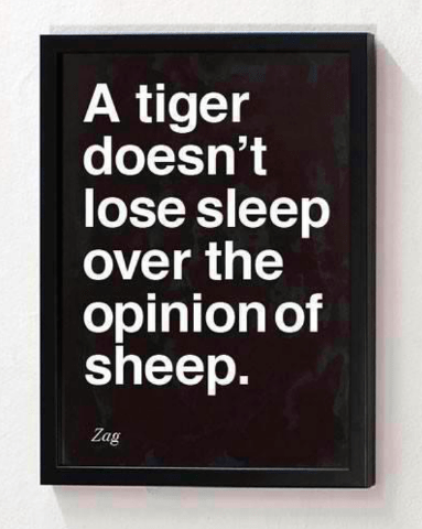 TigerVsheep