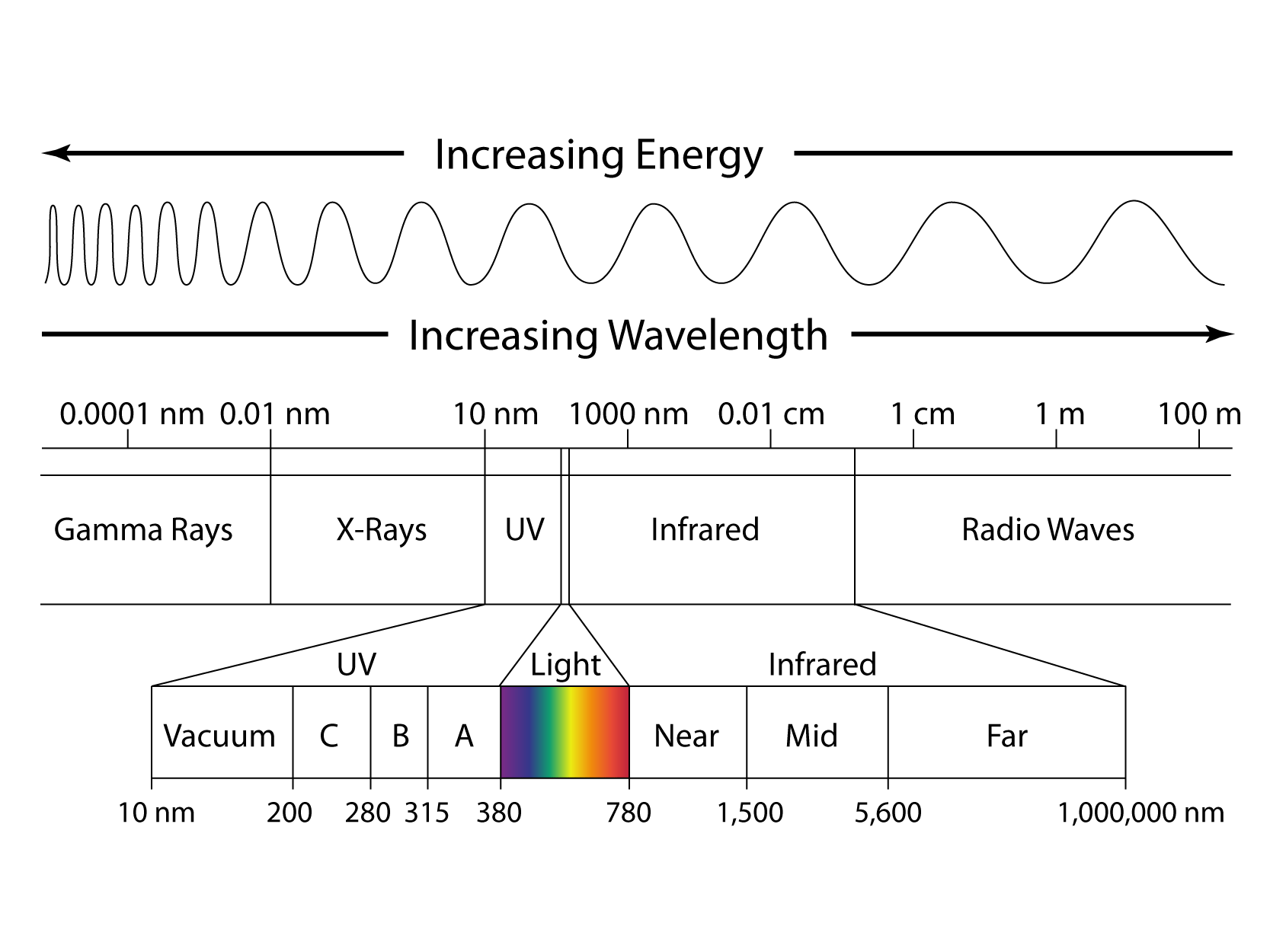 The Schema Frequency