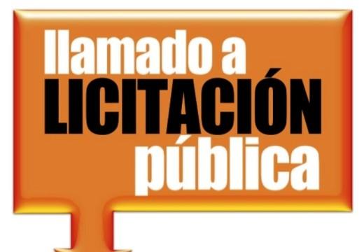 Llamado a Licitación Pública N° 07/2021