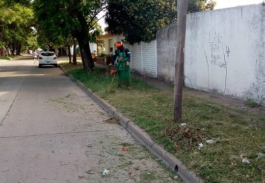 Cañada de Gómez. Continúan los trabajos de desmalezamiento.