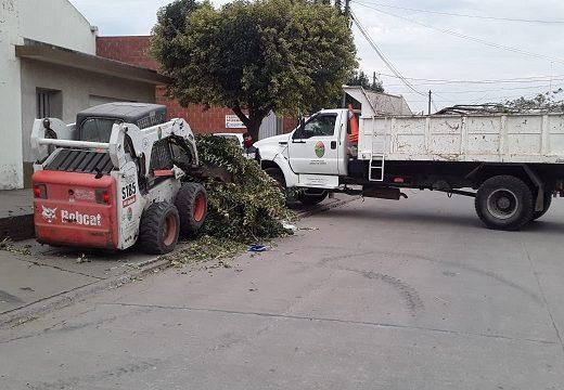 Cañada de Gómez. Continúan las tareas de higiene urbana.