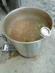 Just added the final aroma hops