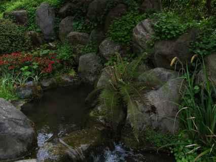 Jardin Albert Kahn (13)