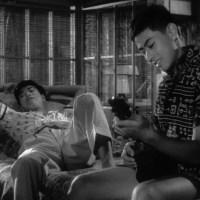 Kurutta kajitsu | 狂った果実 | Crazed Fruit [1956]