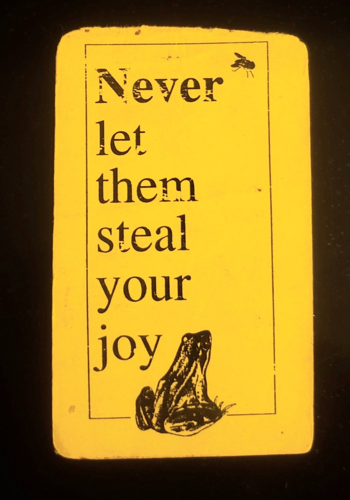 Never Let Them Steal Your Joy