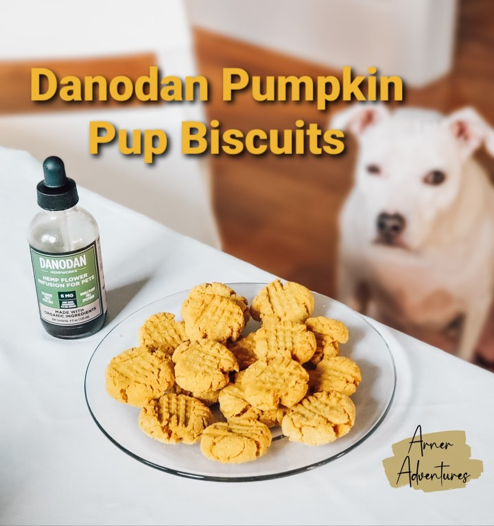 Danodan Pumpkin Pup Biscuits