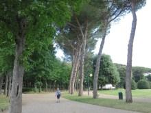 Il Prato (the park) is just above the big square