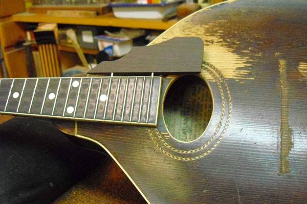 Refret and replace pick guard on A model mandolin