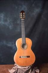 Classical guitar by Arnie Gamble.