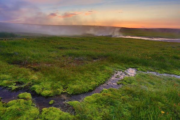 Moos und heiße Quellen in Hveravellir, Island