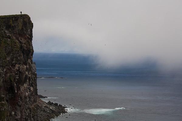 Látrabjarg, Westfjorde - Island
