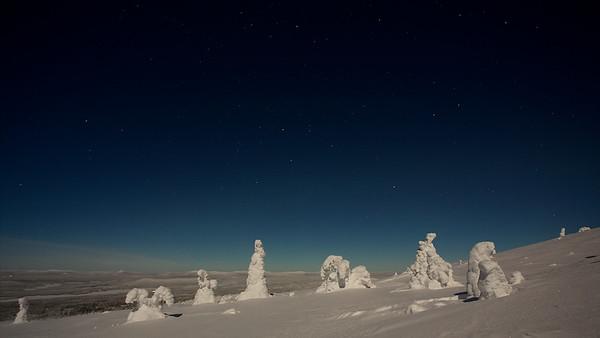Winterwunderland um Mitternacht auf dem Akkanolke bei Arvidsjaur - Lappland, Schweden