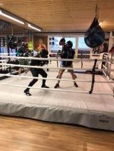 <h5>Mit viel Schwung und Power im Arnold BoxFit.</h5><p>Steht bei Euch auch noch etwas Sport auf dem Programm?</p>