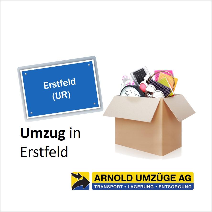 umzug-erstfeld