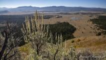 Signal Mountain - Snake River Valley
