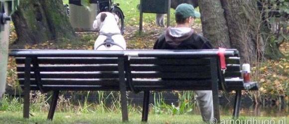 De Hondenuitlaatservice