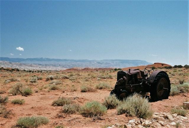 2003-07 Pryor Mountain 1 - Wild Horses (112)
