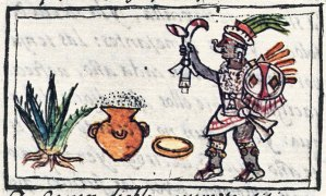 elixires aztecas