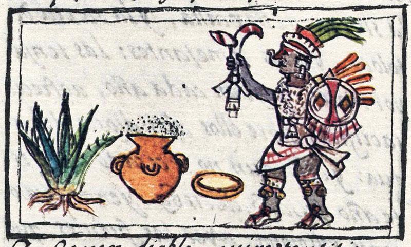 Terapia floral con elixires aztecas