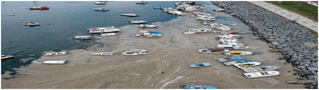 सी-स्नोट से तुर्की के पास सागर को खतरा  (07.06.21 डेली करंट अफेयर्स)