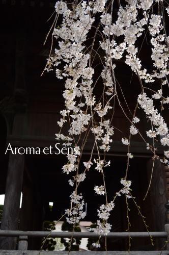 浦和発♪アロマでオンリーワンの幸せへと導く自宅サロン-玉蔵院3