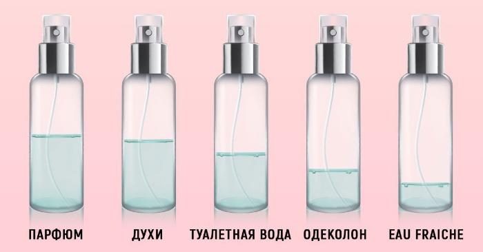 Vad är skillnaden mellan toalettvatten från parfymer - Foto 2