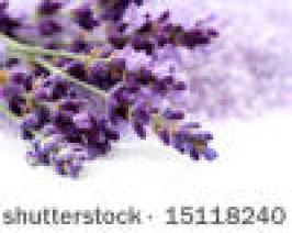 Lavendelstraus