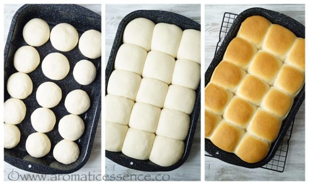 Shaping, second rise, and baking the rolls