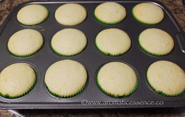 baked cupcakes out of the oven