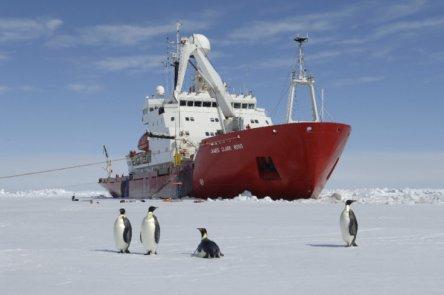 """Un navire de recherche se dirige vers un écosystème antarctique """"caché"""" Crédit: British Antarctic Survey"""