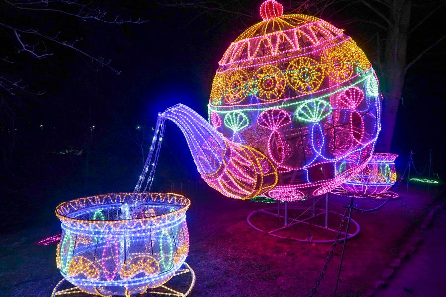 Magical Lantern - Teapot and cup display