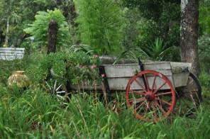 fazenda-hidromineral-dorizzon-tag-7